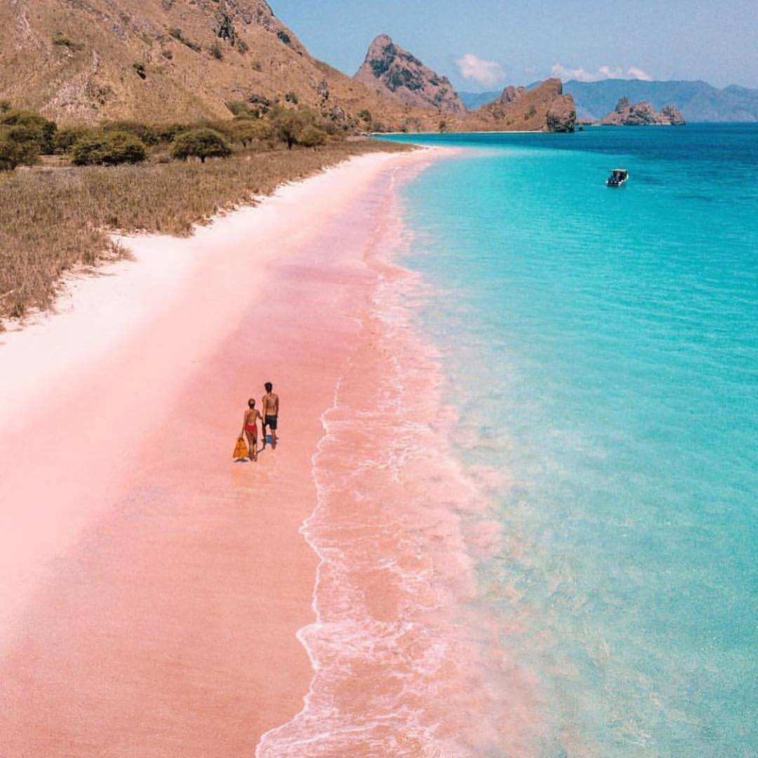 Pantai Pink Pulau Komodo, Images From @graceandkenzi