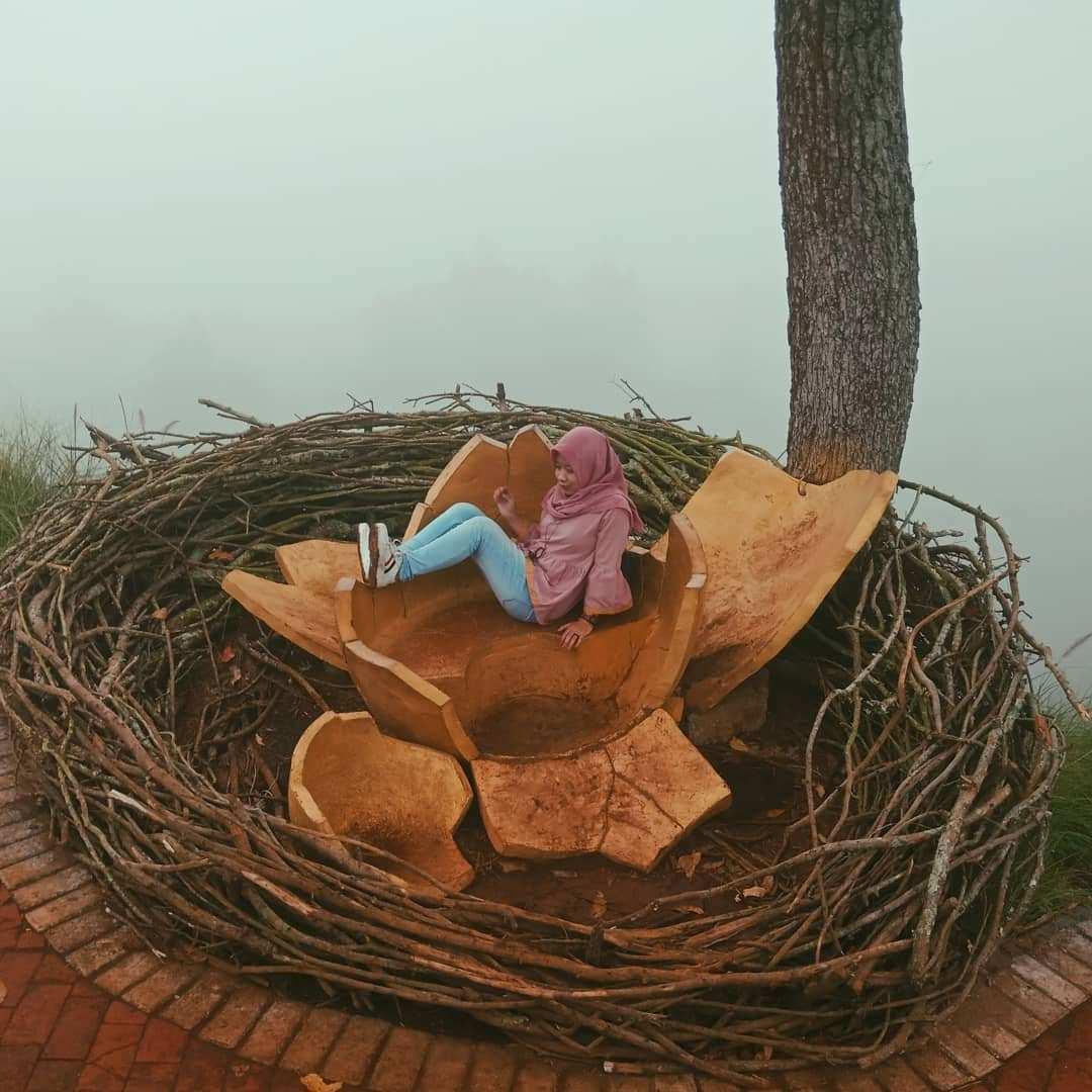 Sarang Burung di Taman Langit Gunung Banyak, Images From @nana1403