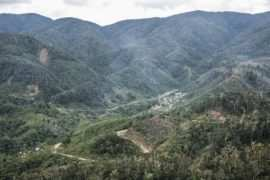 Pegunungan Arfak Images From @rizkidwiput 270x180