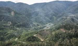 Pegunungan Arfak Images From @rizkidwiput