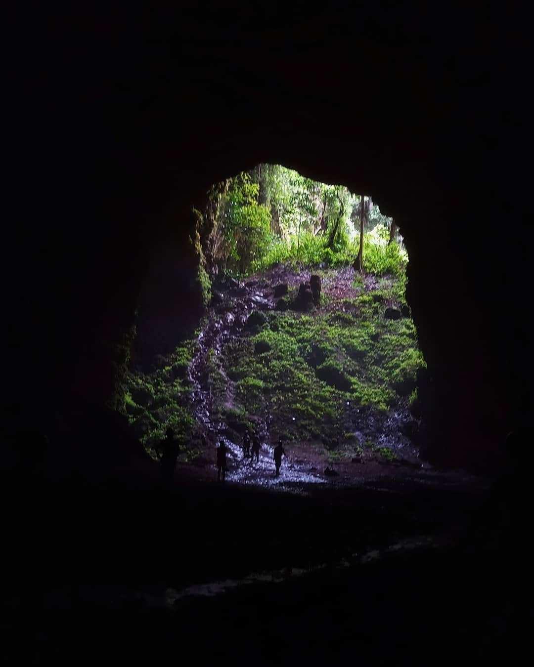 Suasana Lorong Masuk Goa Jomblang di Lihat Dari Dalam, Image From @quintanabilla