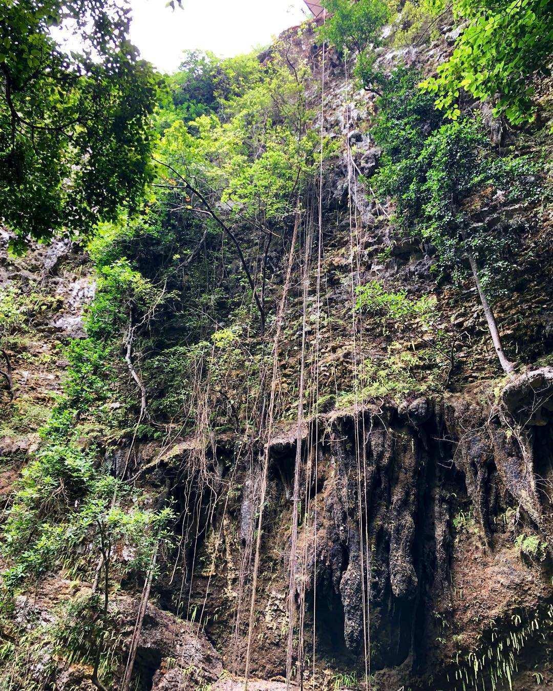 Tebing Yang akan Di Turunin Untuk Menuju Lokasi Goa Jomblang, Image From @palupiiskandar