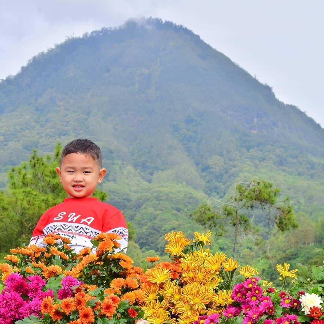 Batu Flower Garden, Image From @ahmad_sofa_anwari