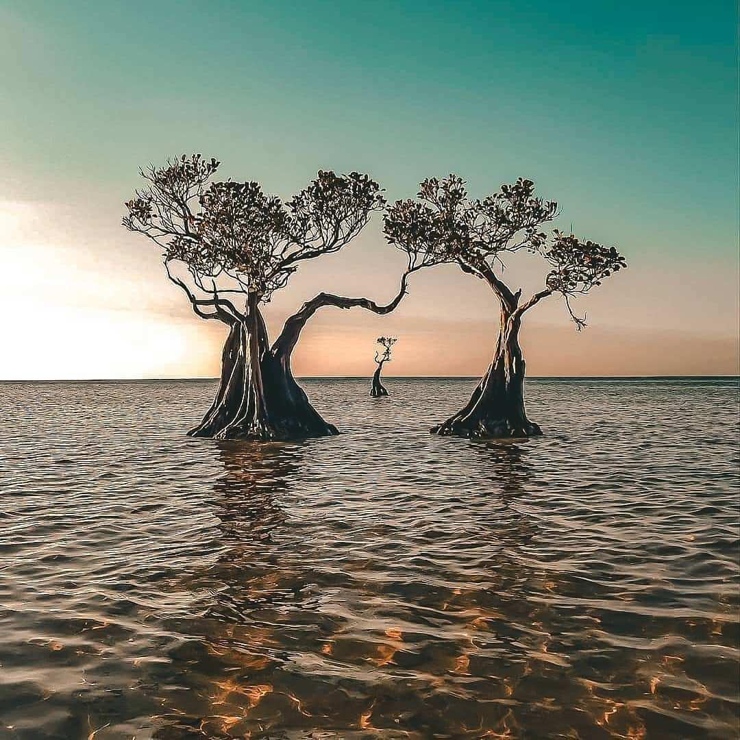 Beningnya Air di Pantai Walakiri, Image From @thisidmen