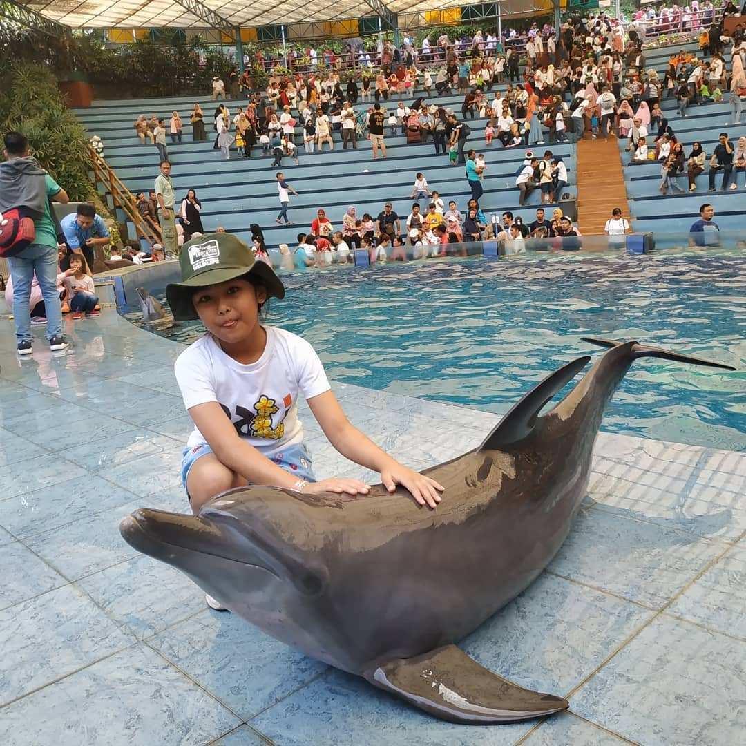 Berfoto Bersama Dolphin di Taman Safari Prigen, Image From @mayangsari.dian