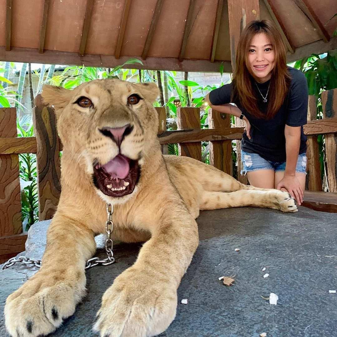 Berfoto Bersama Singa di Taman Safari Prigen, Image From @keziamaya_mc