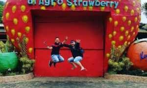 Berfoto di depan Agro Strawbery, Image From @myazidtaib