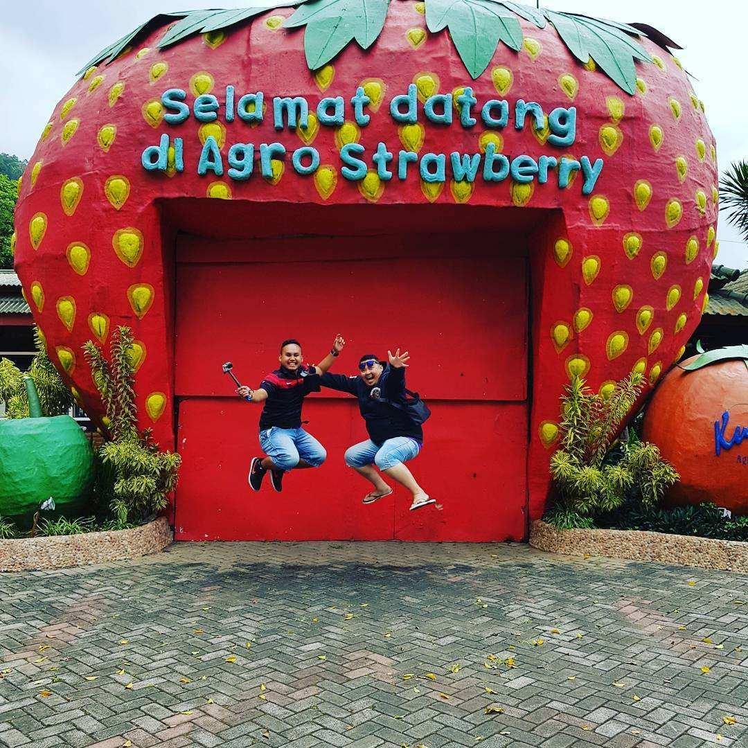 Berfoto di depan Agro Strawbery Image From @myazidtaib