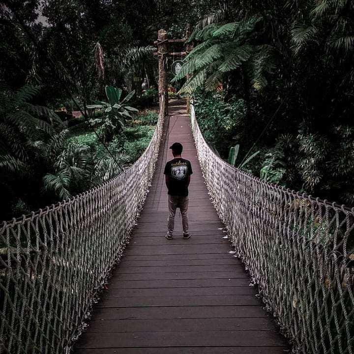 Jembatan Buaya di zona Baby Zoo Taman Safari Prigen, Image From @afrizaljiddansafwan