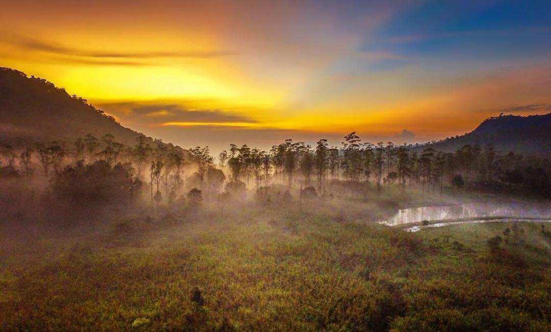 Pemandangan Sunrise di Ranca Upas Bandung Image From @ranca_upas