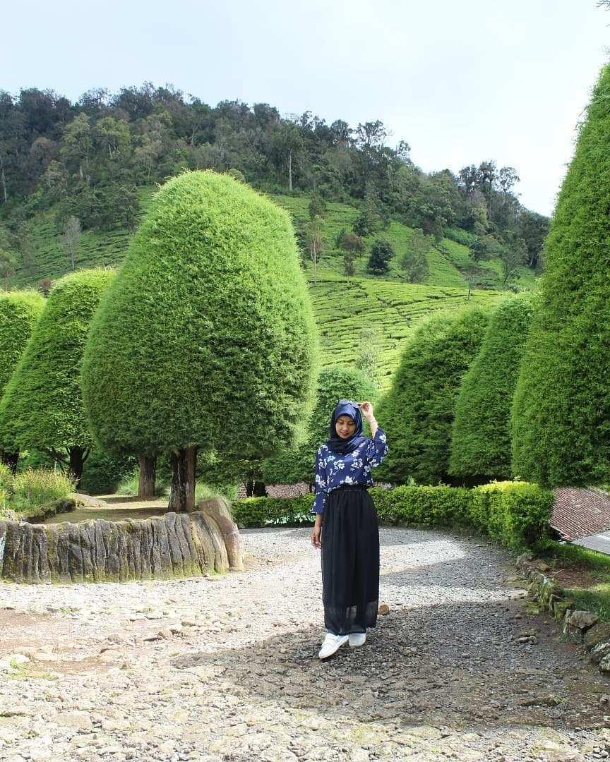 Berfoto dengan Latar Pohon Cemara Berbentuk Jamur, Image From @queendiera_areantie
