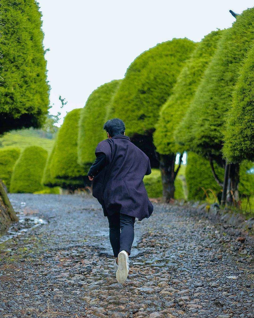 Berlarian Diantara Pohon Cemara di Bukit Jamur Rancabolang Ciwidey Bandung, Image From @kepinhelmy