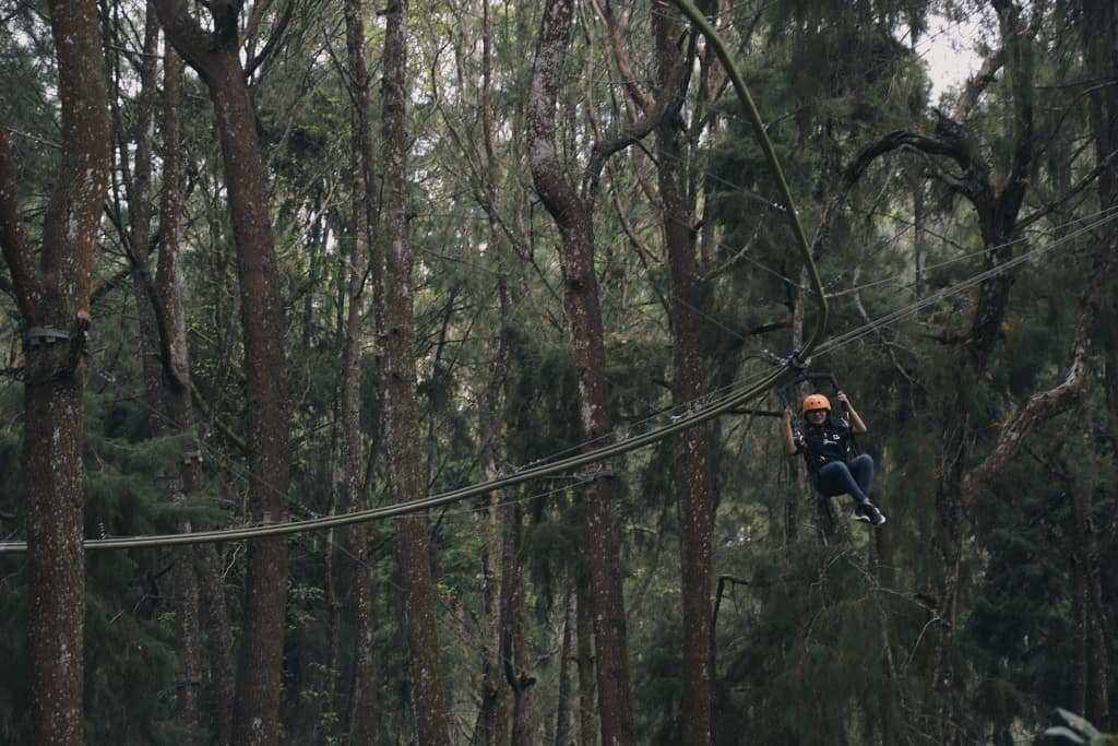 Flying Fox di Kopeng Treetop, Image From @adc.angel