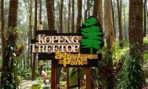 Kopeng Treetop Semarang, Image From @hamdanyusufmuhammad