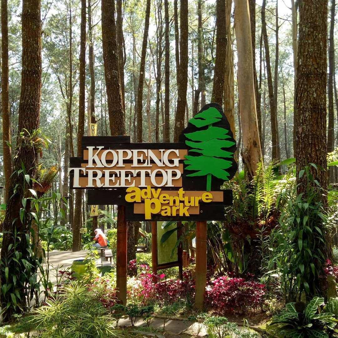 Harga Tiket Masuk Kopeng Treetop Adventure Park Semarang November