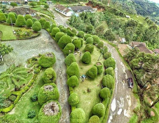 Pemandangan Bukit Jamur Rancabolang Ciwidey Bandung dari Atas, Image From @marztravel