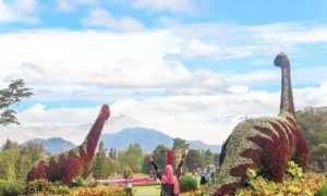 Taman Bunga Nusantara Dengan Pemandangan Dinosaurus, Image From @elsa_tumbir