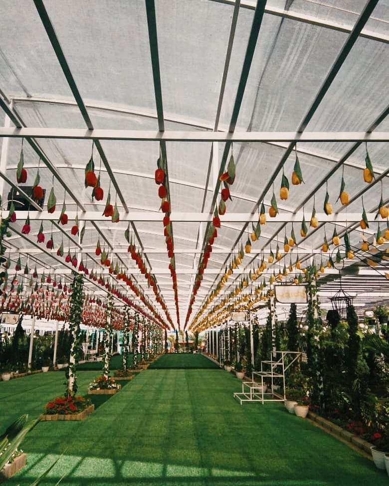 Berbagai Tanaman di Dalam Ruangan Florawisata San Terra, Image From @florawisata.santerra