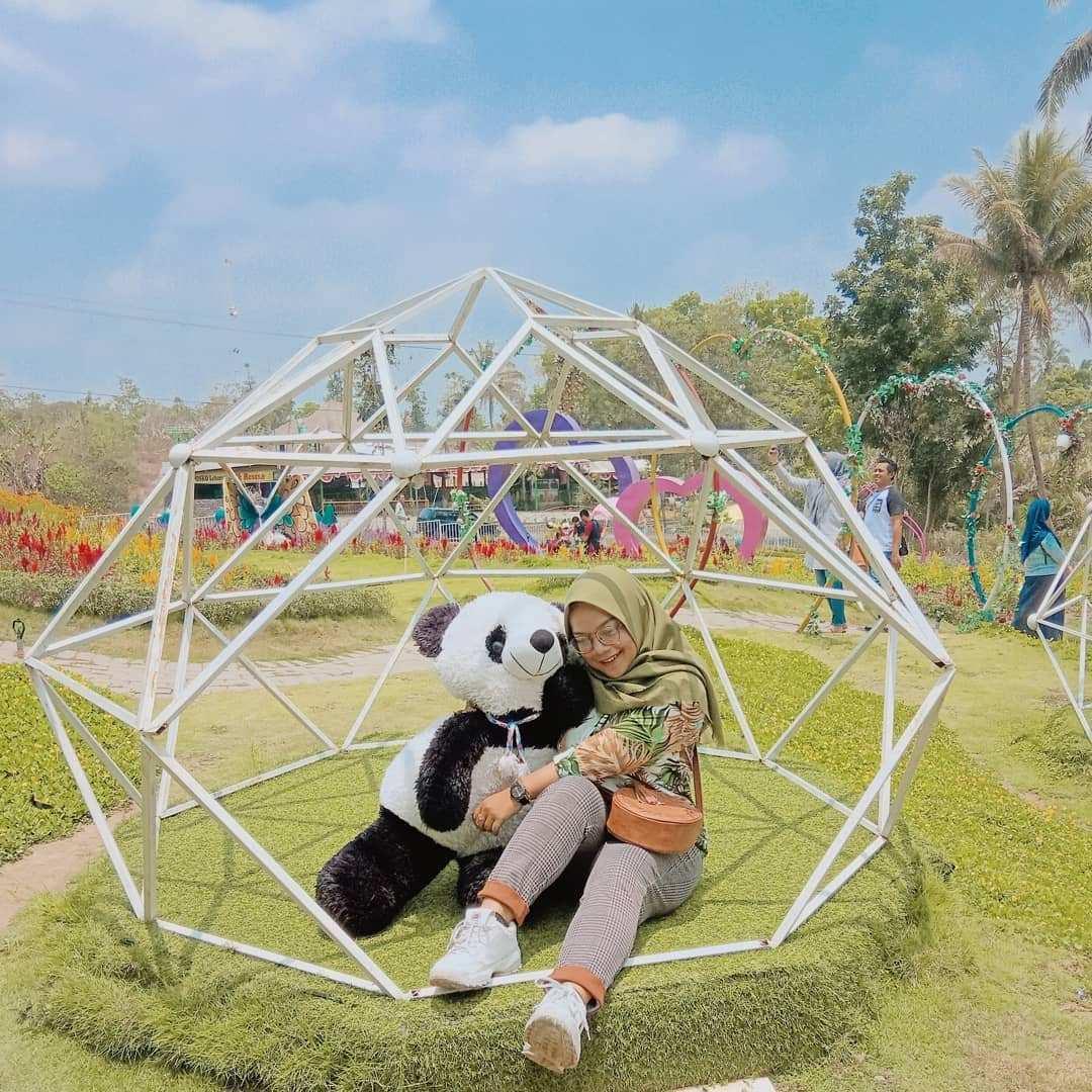 Spot Foto di Alamanda Jogja Flower Garden, Image From @desthia_ayu