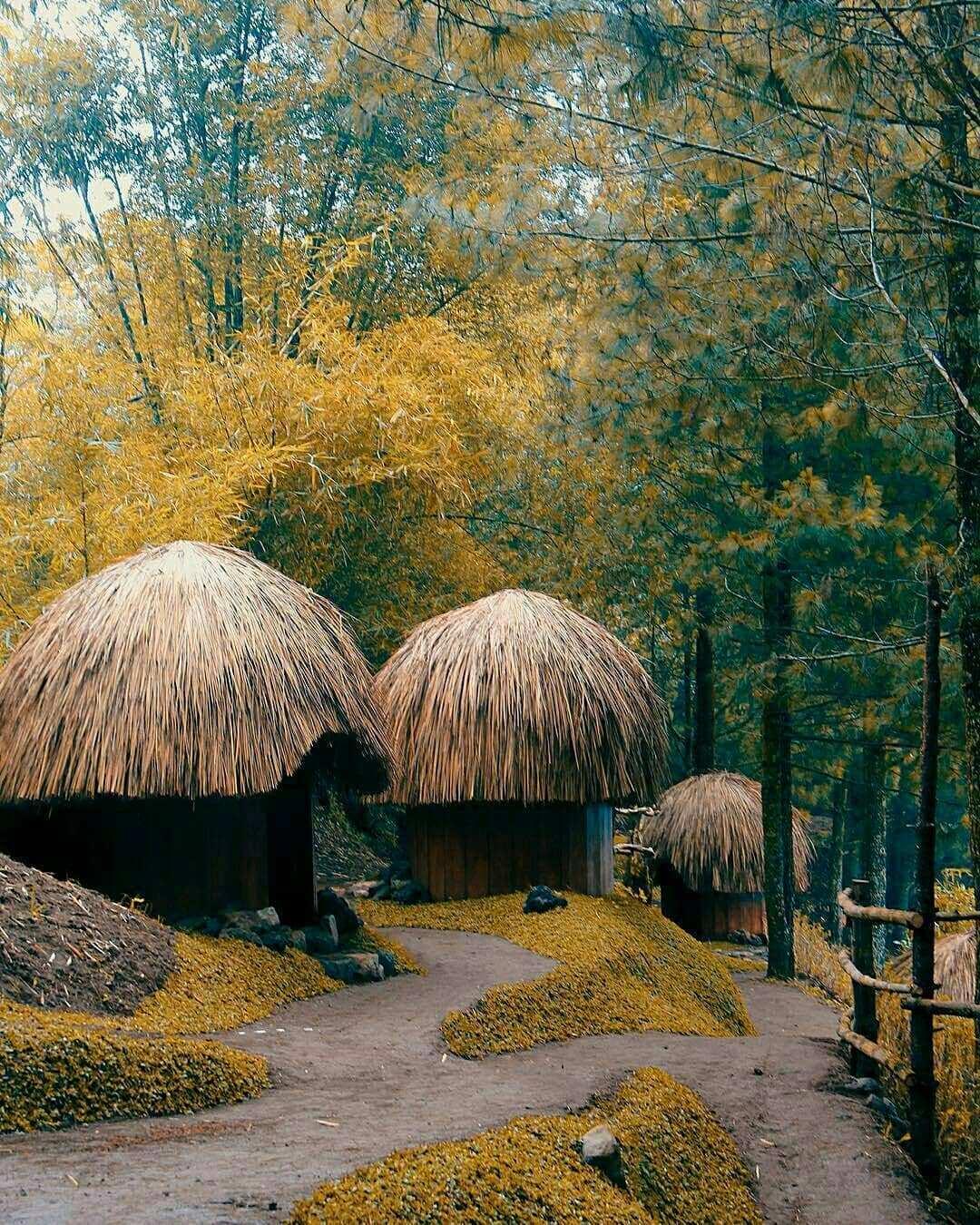 Spot Rumah Honai Papua Yang ada di Goa Pinus Pujon Batu, Image From @andrenosaurus