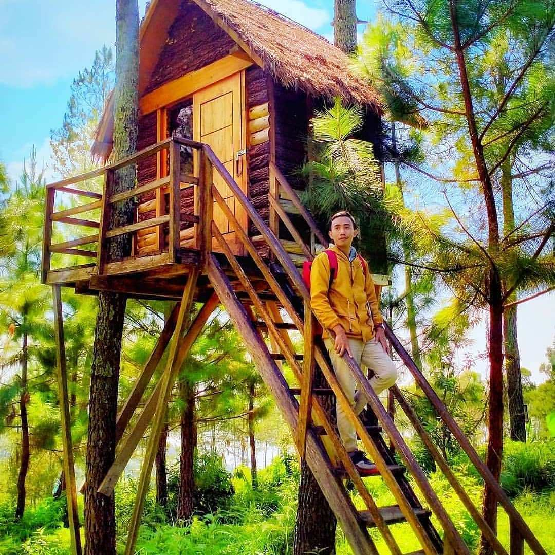 Rumah Pohon di Jendela Langit Prigen Image From @thisisthoffa