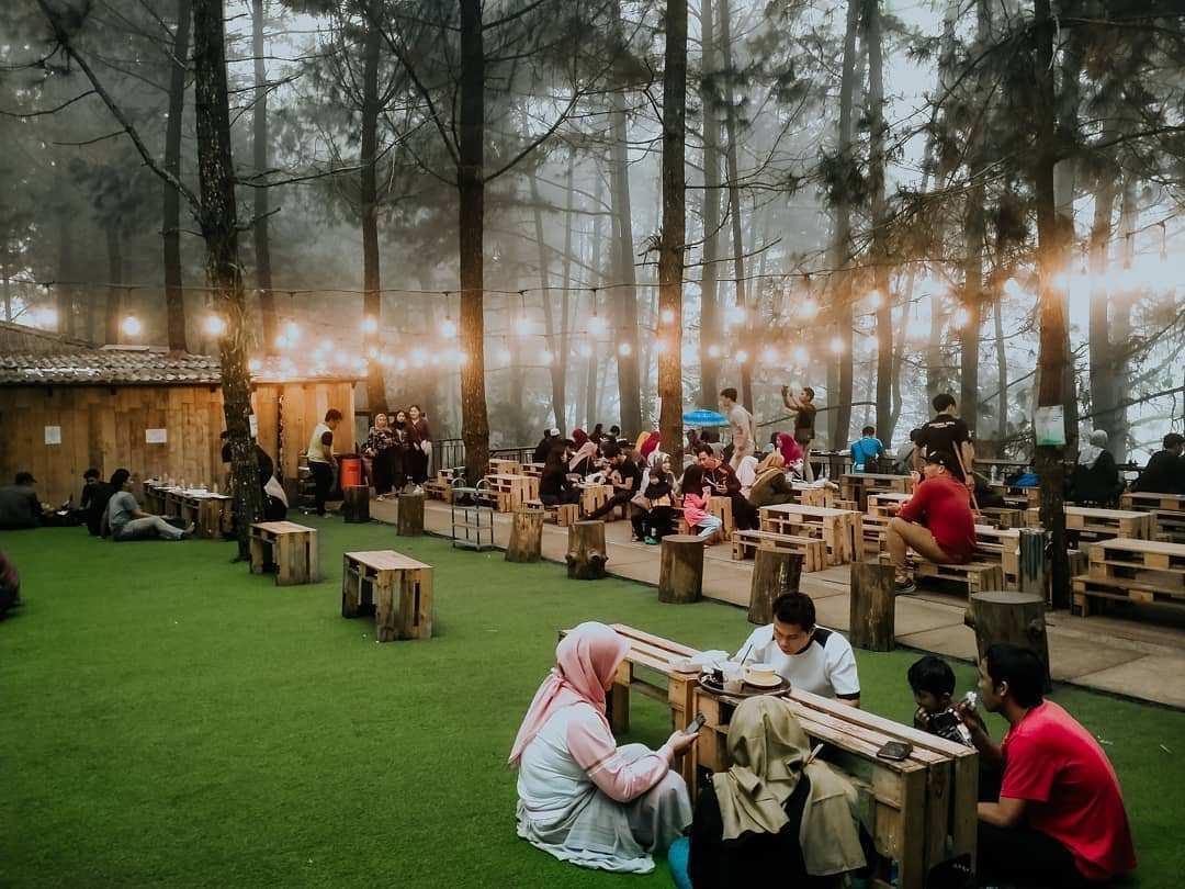 Suasana Kabut di Kopi Daong Bogor Image From @nizzar_picture