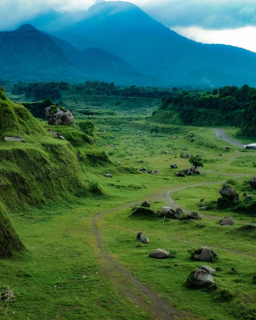 Hamparan Hijau di Ranu Manduro Mojokerto Image From @amir_zainuddinn