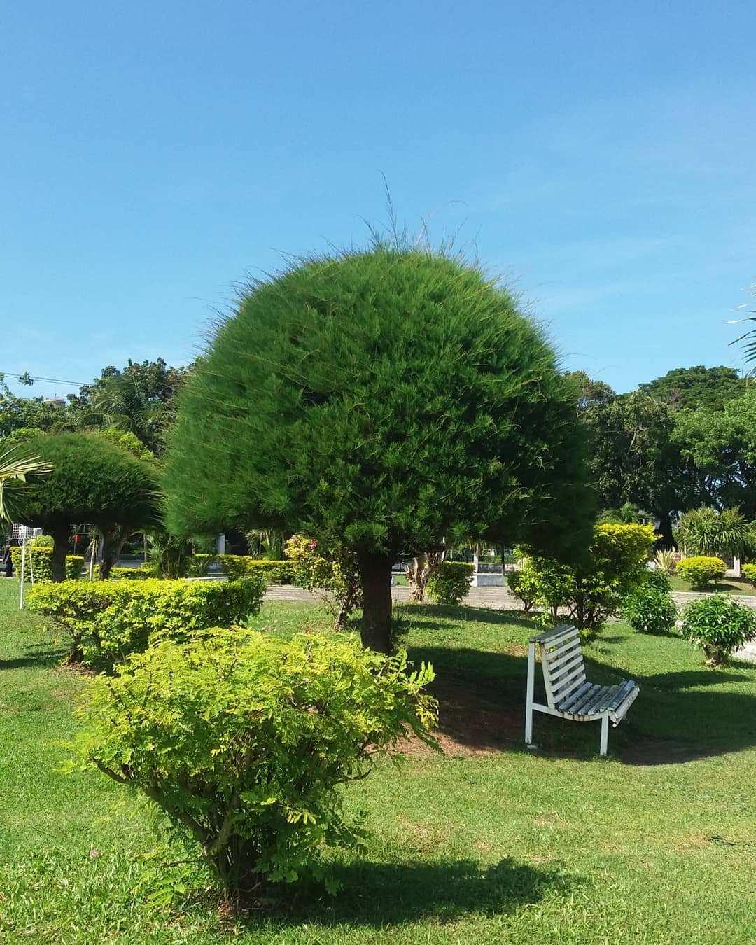 Taman di Taman Sari Gunongan Aceh Image From @adliyadel