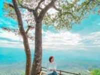Gardu Pandang di Bukit Puji Ningrum Tasikmalaya Image From @c1ng.fangky 200x150