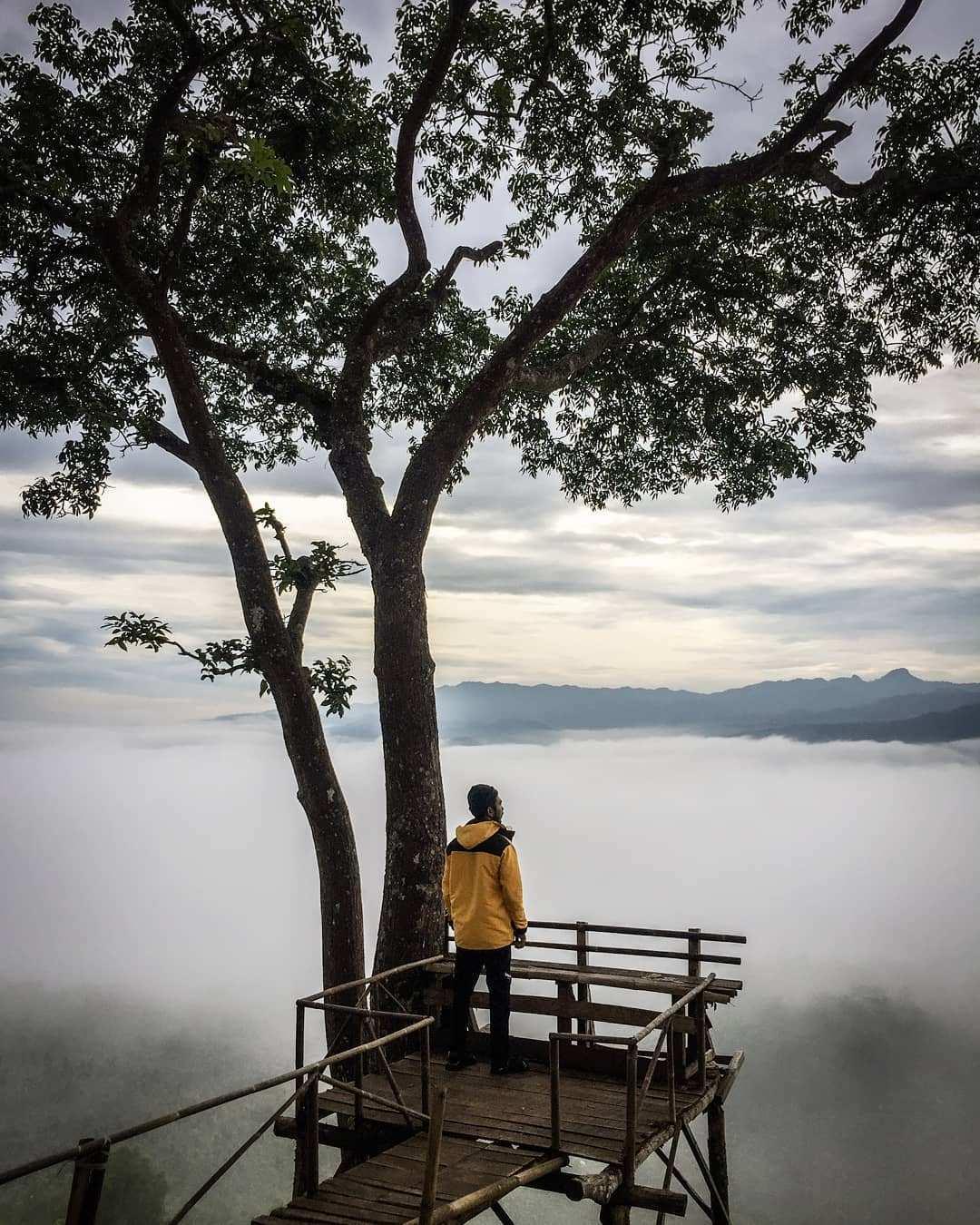 Pekatnya Awan Pagi Hari di Bukit Puji Ningrum Image From @naddzif