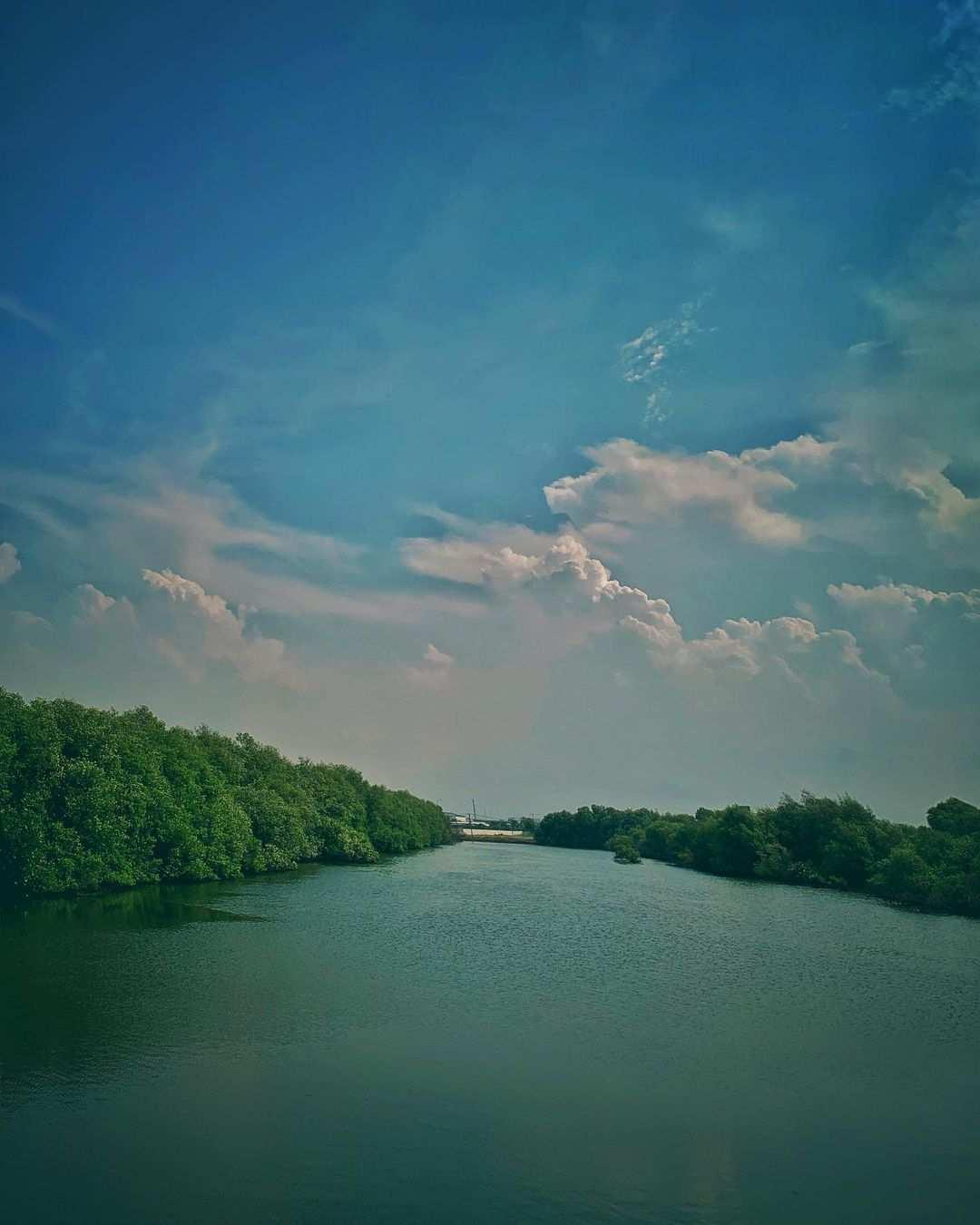 Sungai Yang Ada Di Mangrove PIK Jakarta Utara Image From @galeri110100