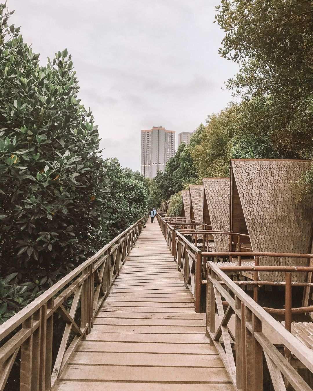 Tempat Menginap Di Hutan Mangrove PIK Image From @eatineraryid