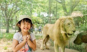 Berfoto Dengan Singa Di Faunaland Ancol Image From @melisarsn