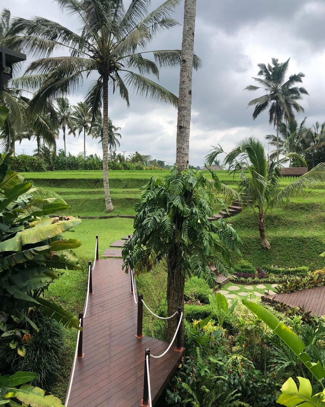 Jalan Setapak Di Secret Garden Village Image From @wander Tan_
