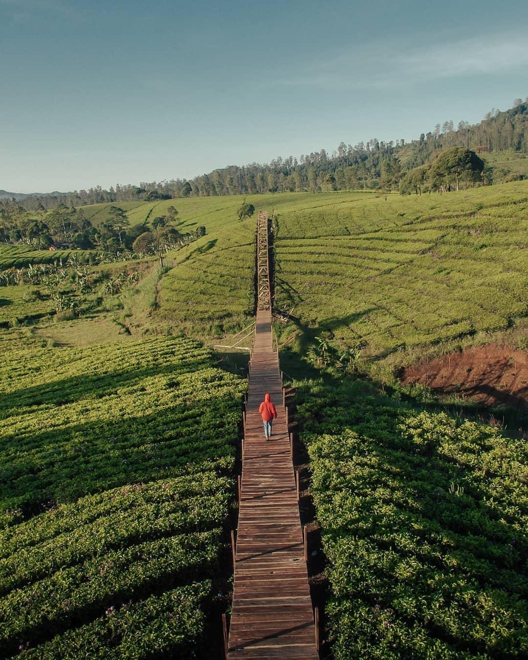 Jembatan Kayu Di Nuansa Riung Gunung Image From @sobar_rdn