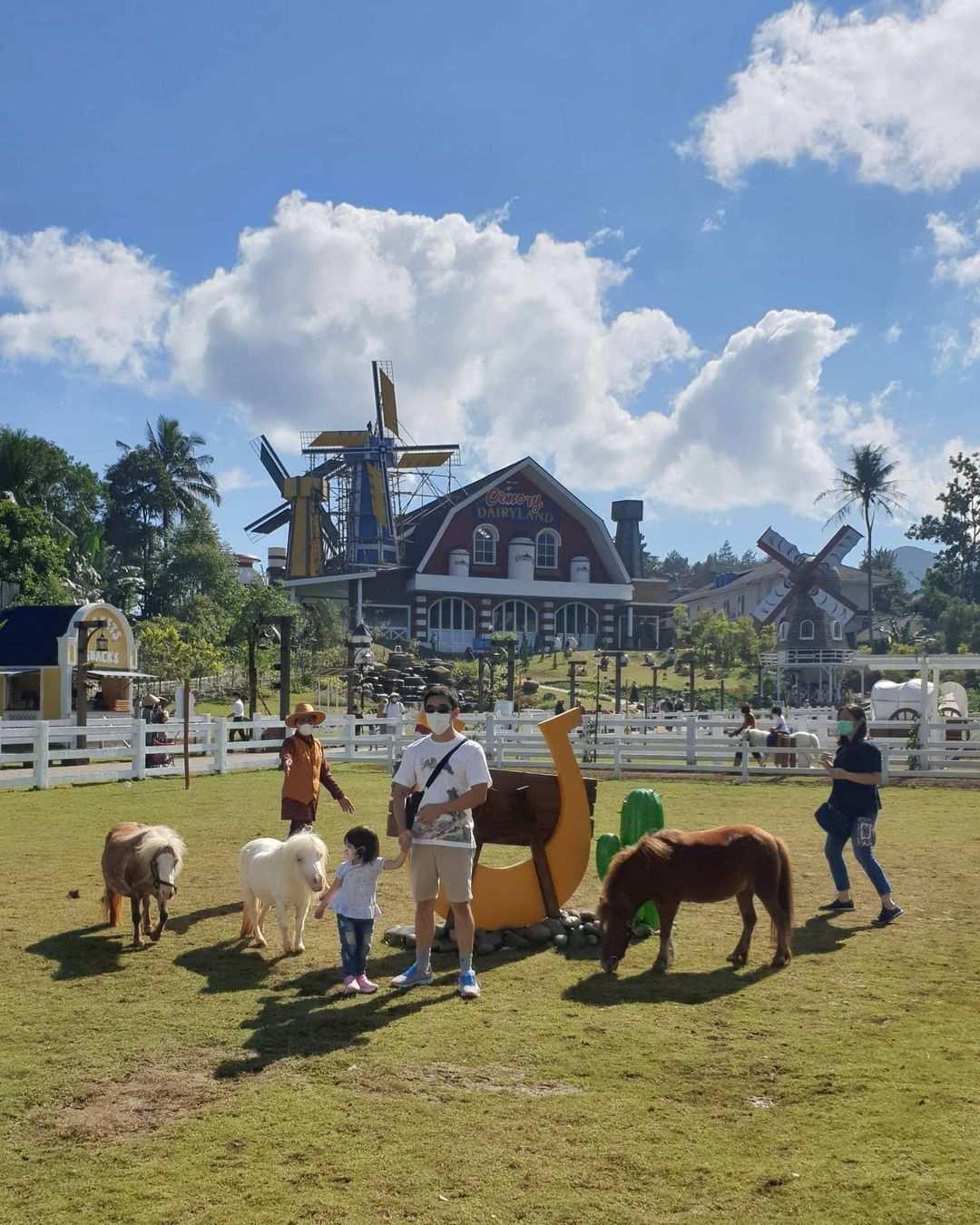 Kuda Pony Di Cimory Dairyland Puncak Bogor Image From @andriselly