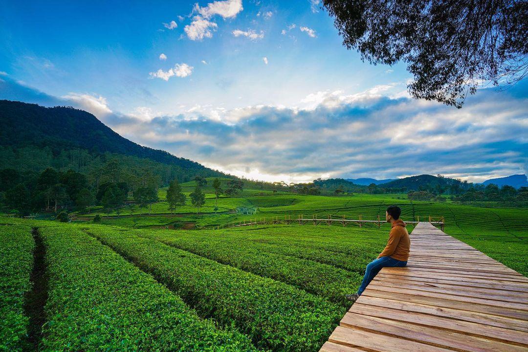 Pemandangan Di Nuansa Riung Gunung Pangalengan Image From @adhikagraha