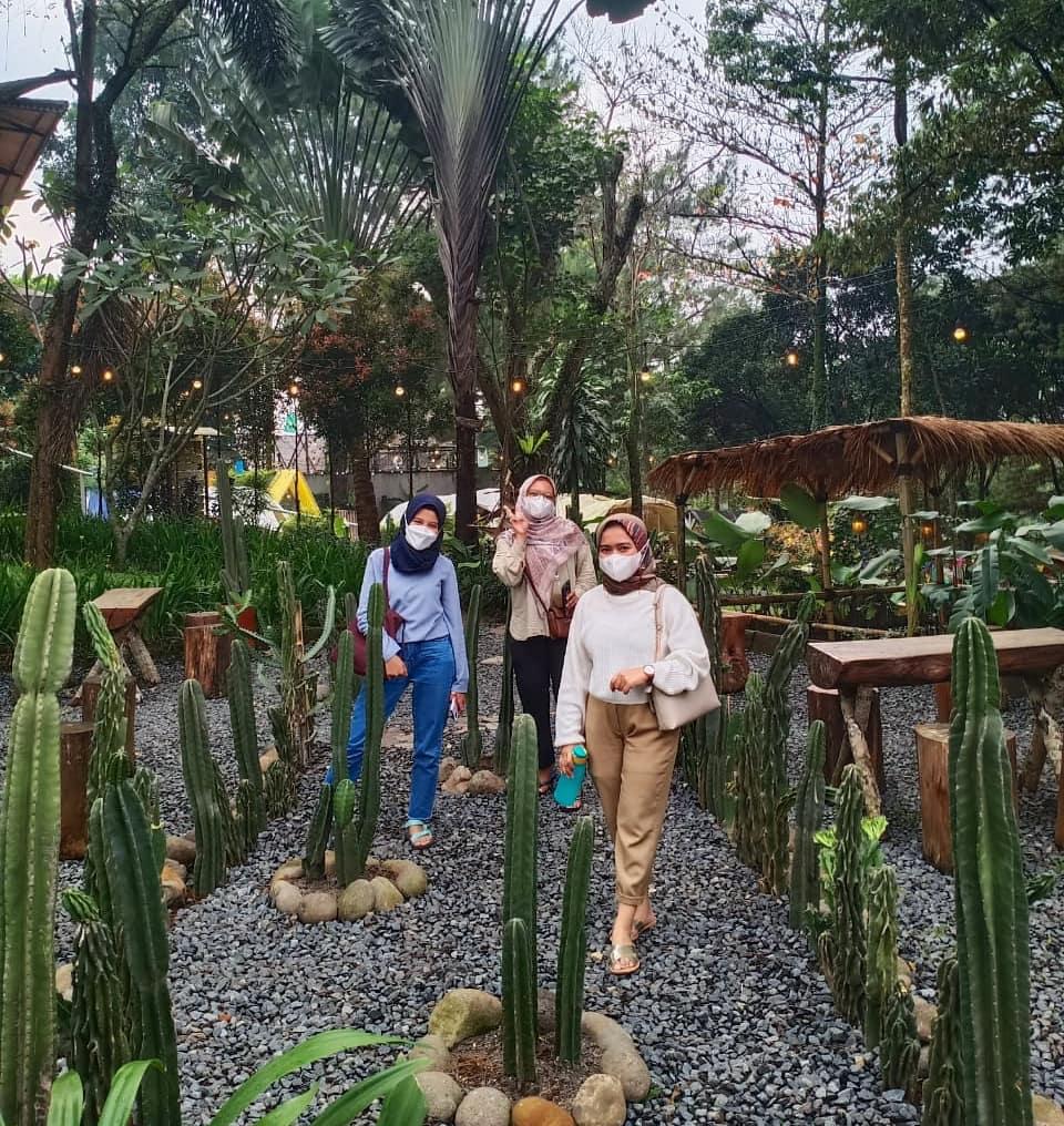 Tanaman Kaktus Di The Ironbee Megamendung Image From @the_ironbee