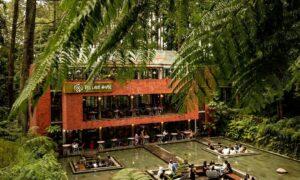 The Lake House Di Sore Hari Image From @fajarmojar