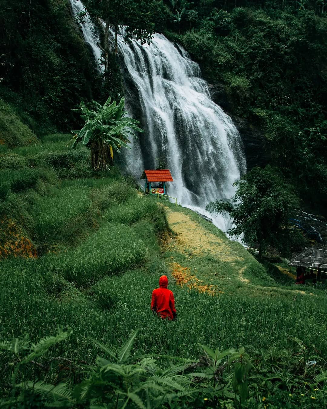 Hijaunya Alam Sekitar Curug Cikondang Image From @maul 96