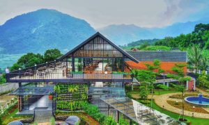 Pancar Garden Sentul Bogor Image From @el_ferdinand S